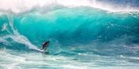 Hawaii's paradise