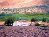 Land And 2 Houses In Fuerteventura For Sale