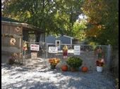 Established Turnkey Pet Resort And Home For Sale