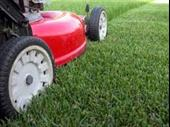 Well Established Yard Care Company For Sale