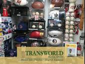 Established Collectable Shop In Pinellas County For Sale