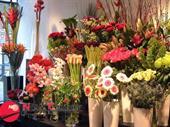 Florist -- Kew East -- # For Sale