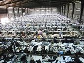 Automated High Tech Garment Manufacturing With Domestic For Sale